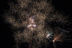 New year's firework (Marta Panzeri) Tags: firework fuochi fuochidartificio pirotecnico anno annonuovo newyear 2019 light night