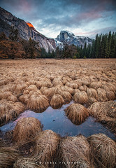 Half Dome and Meadow (Mike Filippoff) Tags: yosemite california nationalpark moonrise dusk cloudy meadow beautiful atmosphere cold winter snow 2019 sunset grass sky landscape field halfdome ngc