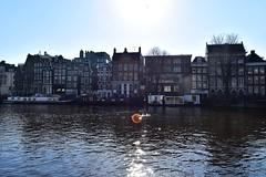 DSC_0405 - Copie (elisa.savio) Tags: amsterdam trip travel voyage landscape bike photographer nikkor nikon