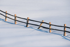 On the Fence (BenjaminMWilliamson) Tags: fence image landscape me maine minimalist newengland photo photography quiet rail scenery scenic shadow simple snow split splitrail usa white winter