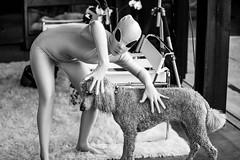 Aliens and Puppy Dogs (Thomas Hawk) Tags: alien america idaho katewesterhout ketchum scottevest scottevesthq sunvalley susie techondeck usa unitedstates unitedstatesofamerica bw dog poodle fav10 fav25 fav50