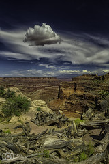 Decide on me, yeah decide on us (Dave Arnold Photo) Tags: ut utah moab canyonlands nationalpark shafercanyon mountains coloradoriver national recreation image pic us usa picture photo photograph photography photographer davearnold davearnoldphotocom beautiful lasalmountains fantastic travel scenic cloud sunset rockymountains spread wet cloudy desert canyon canon 5d mkiii 24105mm huge big mountain rock perfect sanjuancounty landscape nature summer rural outdoor weather sky mesa butte arches grandview point
