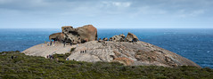 Remarkable Rocks (andyscho2004) Tags: remarkablerocks kangarooisland ki southaustralia sa australia au surreal granite rocks coast ocean sky tourism ancient sacred erosion nikon d7100 sculptural
