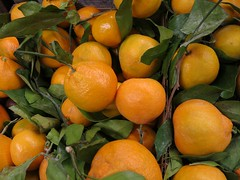 Daily Colours - First of the Season (Pushapoze (NMP)) Tags: citrus leaves mandarines