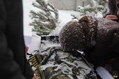 36. Похороны схимонахини Магдалины (Черных) 11.01.2019