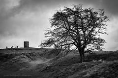 Walk up to 'Sollors' (cabmanstu) Tags: buxton derbyshire peak district mono monochrome blackandwhitephotography tree architecture victorian walking landscape