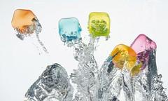 Splash! (Ruby van Assendelft) Tags: splash water fun color creative white drops