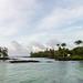 Rock pools Hilo Big island Hawaii Park