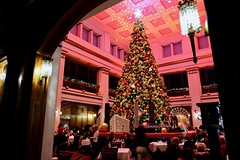 2018 Marshall Field's Great Tree (dangaken) Tags: macys marshallfields greattree marshallfieldsgreattree walnutroom 7onstate statestreet christmas christmastree 7thfloor chicago christmasinchicago usa city store departmentstore shop shoppers shopping