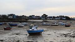 Petit Port d'Argenton, Landunvez (anaelle.jezequel) Tags: marée algues rochers argenton landunvez mer océan france finistèrenord finistère bretagne port sable littoral bateaux