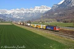 SBB CFF FFS: Re 620 019, Mels (CH) (Alexandre Zanello) Tags: re620 re66 sbb cff ffs cargo arbon mels churfirsten alpes alpen alpi alps rbl rangierbahnhof limmattal buchs suisse schweiz svizzera svizra switzerland