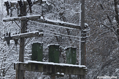 Winter Pics (rumimume) Tags: potd rumimume 2017 niagara ontario canada photo canon 80d sigma winter snow weather outdoor day 2018