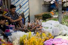 _V1A9440.jpg (DAVEBARTLETT2) Tags: vietnam saigon flowers flower market stall street seller