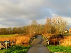 Veere (Omroep Zeeland) Tags: mooi plaatje veere