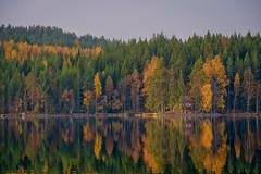 Dalarna autumn (Klas-Herman Lundgren) Tags: dalarna sweden gimmen autumn höst oktober october trees colors lake sjö höstfärger stillasjö water sifferbo se