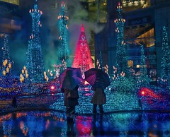 Tokyo Trip (Trey Ratcliff) Tags: tokyo japan treyratcliff stuckincustoms stuckincustomscom umbrella colour color reflection night lights street portrait hdr hdrtutorial hdrphotography hdrphoto aurorahdr leica