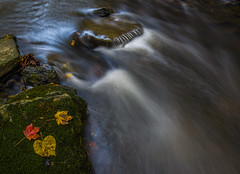 Abstract cascade (Bernie Kasper (4 million views)) Tags: art abstract berniekasper cliftyfallsstatepark color cliftyfalls d750 evening family fall hiking indiana jeffersoncounty light landscape leaf leaves love longexposure madisonindiana madisonindianacliftyfallsstatepark nature nikon naturephotography new outdoors outdoor old outside photography plant park photos raw red reflection reflections travel trees trail statepark unitedstates usa vacation vivid