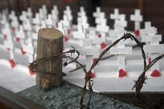Remembrance (jimj0will) Tags: 19141918 19391945 heroes soldiers war poppies remembrance sacrifice graves poppyfields dunkirk privatejameswilliams privatewalterramsey somme flanders ww1 ww2