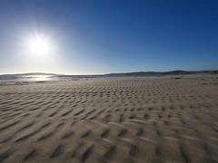 P1118303 (carlo) Tags: panasonic g9 dmcg9 africa africanlandscape namibia agatebeach beach agate