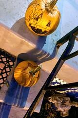 """Baby shark, doo doo doo doo doo doo"" ―Pinkfong 🎃 🍭 (anokarina) Tags: appleiphone8 petworth halloween holiday night instagram nofilter pumpkins decorations jackolanterns gourds allhallowseve"