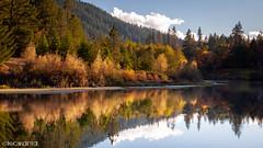 (Nick Kanta) Tags: autumn clouds color d90 nikon oregon outdoorphotography reflection river rogueriver sky tamron1750 trees water