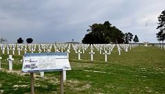 Nécropole nationale d'Aubérive (toucanne) Tags: cemetery nécropole wwi 19141918 crosses military war guerre champ poppies coquelicots herbe grass arbre tree