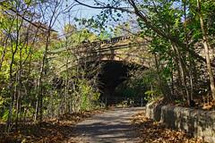 Prospect Park, BK (cisc1970) Tags: sonyilce6300 sony sonya6300 brooklyn nyc prospectpark