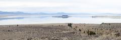 20140123_mono_lake_026 (petamini_pix) Tags: monolake california lake reflection landscape water paohaisland panorama panoramic