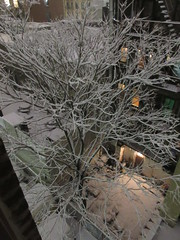 IMG_5078 (Brechtbug) Tags: 2018 november evening blizzard snow storm hells kitchen clinton near times square broadway nyc 11152018 new york city midtown manhattan snowing storms snowstorm winter weather building fog like foggy hell s nemo southern view ny1snow
