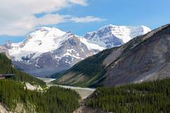 Kanada_0634 (SullyAB) Tags: 2017 alberta columbiaicefield jaspernationalpark kanada nordamerika