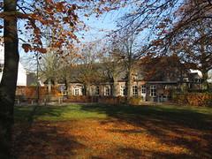 IMG_9047 (Momo1435) Tags: eindhoven brabant waalre herfst herfstkleuren netherlands autumn fall colors