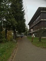 WING Run Furtwangen (Black Forest, Baden, Germany) (Loeffle) Tags: 102018 germany allemagne deutschland baden blackforest schwarzwald foretnoire furtwangen hsfurtwangen wing winglauf wingrun lauf run rennen race 10k 10km 10krace 10krun 10kmlauf