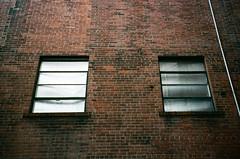foil windows (davidhangell) Tags: color fujicolor film analogue analog colorfilm bricks brick urban