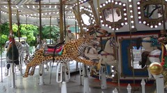 September 14, 2018 (osseous) Tags: 2018september palm beach zoo conservation society lailah carousel