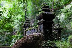 Thailand 2018 (Matilda Diamant) Tags: thailand 2018 rusalka asian asia nature waterfall jungle tropical tropics water river forest wood