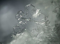 d5d_2559to2566snowflake1jsm (JayEssEmm) Tags: snow snowflake snowflakes stacked stacking ps photoshop massachusetts jsmcelvery mcelvery