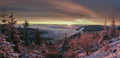 forestMorningGlow (tobias-eger) Tags: blackforest forest sunrise sun sky clouds landscape nature germany winter snow trees valley foggy fog schwarzwald natur sonnenaufgang sonne himmel tal nebel schnee wald bäume hornisgrinde