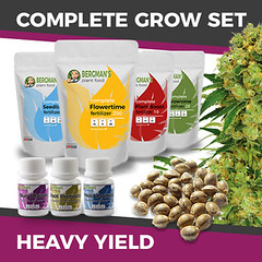 complete-grow-set-heavyyield_large (Watcher1999) Tags: cannabis medical marijuana growing seeds strain plant weed smoking weeds ganja legalize it