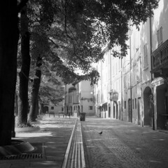 Piazza Fontanesi - Reggio Emilia - September 2018 (cava961) Tags: piazzafontanesi reggioemilia analogue analogico monocromo monochrome bianconero bw 6x6 rolleiflex