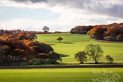 fall-1-5 LOGO (Dave Jones Photography UK) Tags: fall autunm trees pumpkin halloween landscape sunset billinge