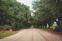 Road Trip: Charleston, SC (rcrowejmu) Tags: charleston landscape people city south carolina town southcarolina love travel photography life trip family usa color canon location show showideas