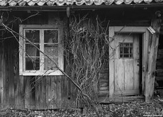 (alpros) Tags: sweden schweden sverige scandinavia northerneurope nordeuropa skandinavien uppsalalän uppland schwarzweiss svartvit blackandwhite monochrome blackwhite