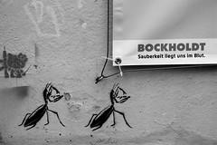 Attack of the Mantis (Von Noorden) Tags: cultur city blackwhite schwarzundweiss germany unesco noiretblanc black white blackandwhite bw sw schwarzweiss schwarz weiss weis schwarzweis monochrome monotone world hansestadt deutschland citys town street streetphotography schatten dark grey gebäude einfarbig lübeck tourism topv door tür glas glass knocker tag tags grafiti grafitti grafitto train trainstation ad advertising promotion ant ants propaganda stencil art fun funny poster placard bill mantis