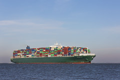 THALASSA TYHI (angelo vlassenrood) Tags: ship vessel nederland netherlands photo shoot shot photoshot picture westerschelde boot schip canon angelo walsoorden cargo container thalassatyhi