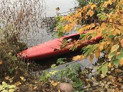 Rotes Kanu im Herbst (VreSko) Tags: nature town ciudad city stadt natur water agua aqua wasser rot gelb blätter kanu herbst autumn hamburg hamburgo deutschland germany norden alster