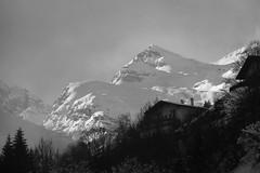 winter in black/white noir/blanc schwarz/weiss (Christopher DunstanBurgh) Tags: hinterhornbach alpen alps alpi tirol tyrol österreich austria autriche