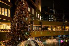 Xmas tree at Tokyo-Dome-City (gemapozo) Tags: kourakuen xmastree tokyodomecity pentax night illumination tokyo k1mkii japan 東京都 日本 jp hdpentaxdfa50mmf14sdmaw 夜景 東京ドームシティ イルミネーション クリスマスツリー