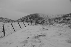 Winter Fencescape (steve_whitmarsh) Tags: aberdeen scotland scottishhighlands highlands mountain hills bw monochrome blackandwhite winter snow ice fence topic cairngorms