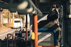 Bus|京都 Kyoto (里卡豆) Tags: 日本 jp olympus 40150mm f28 pro olympus40150mmf28pro olympuspenf penf
