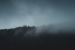 1 - Dark-Side of Azores (alex26.righetti) Tags: azores landscape purelandscape dslr nikonportugal trip travelphotography dark fog trees forest blue clouds mountain composition tamron nature naturallight black shadow portugal portugallandscape amazingworld d7200 nikon